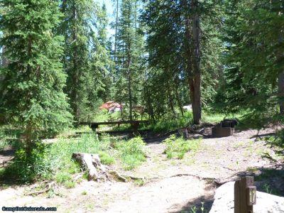 campoutcolorado-meadows-campground-rabbit-ears-thick-trees