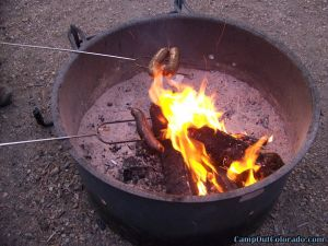 roasting-dogs